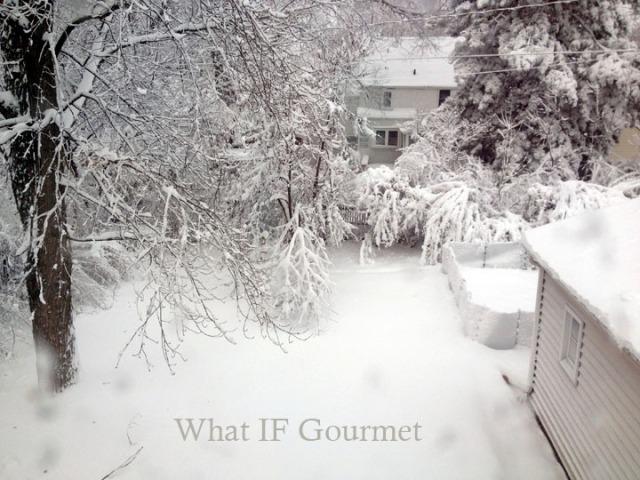 Our backyard in Iowa.