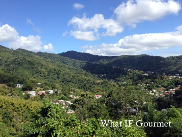 View from Lady Chancellor Hill in Port-of-Spain, Trinidad.
