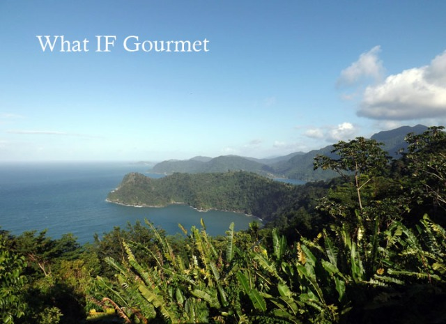 North Coast Road overlook, on the way to Maracas Bay from Port of Spain, Trinidad.