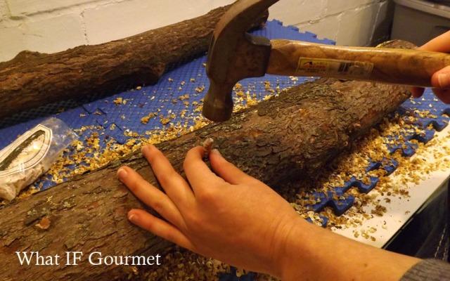 Step2-Hammering