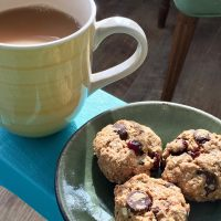 Winter Warmer Oatmeal Cookies (GF/DF)